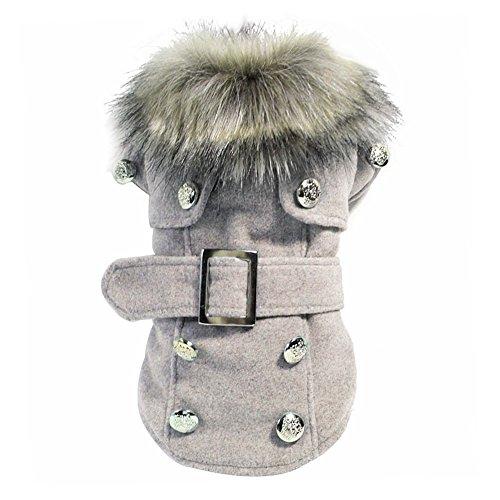 Manteau hiver pour chat