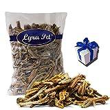 Lyra Pet 1 kg Hühnerfüsse Kausnack Krallen Hähnchenfüsse Hundefutter + Geschenk