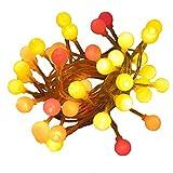 40 lampadine a LED alimentate a batteria, multicolore (Luci a LED dei colori del tramonto: rosso, arancio e giallo), illuminazione natalizia da interno. SECONDI DI FABBRICA