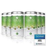 Dieta attiva LINEAVI • frullato proteico naturale per dimagrire • senza lattosio e senza glutine • made in Germany • 6 x 500 g immagine