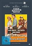 Sechs schwarze Pferde (Edition Western-Legenden #60)