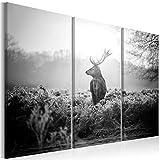 murando - Bilder Hirsch 120x80 cm - Leinwandbilder - Fertig Aufgespannt - Vlies Leinwand - 3 Teilig Wandbilder XXL - Kunstdrucke - Wandbild - Natur Landschaft Tier g-B-0045-b-g