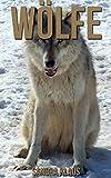 Kinderbuch: Erstaunliche Fakten & Bilder über Wölfe