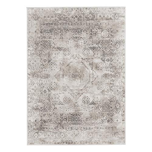 mynes Home Moderner Kurzflor Vintage Teppich in Used Look Beige Grau Braun mit floralen und moderner Musterung auch als Wohnzimmerteppich geeignet (160x230 cm)