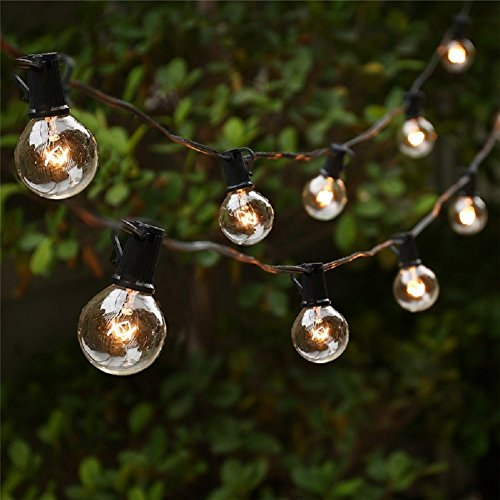 25ft G40 Clear Globe Bulbs Patio String Lights with 25 G40 Bulbs, Waterproof, End to End, Indoor/ Outdoor String Lights, Perfect for Patio, Cafe, Garden, Festoon Party Decoration