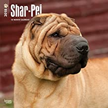 Shar Pei - Shar-Pei 2018-18-Monatskalender mit freier DogDays-App: Original BrownTrout-Kalender [Mehrsprachig] [Kalender] (Wall-Kalender)