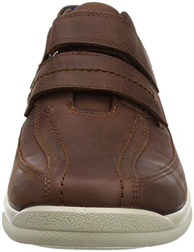 Hotter Medway, Sneakers Basses Homme Marron (Beige)