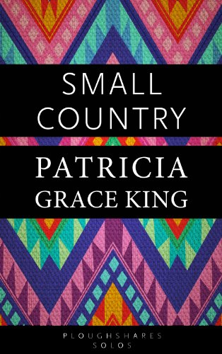 Small Country Kindle Single Ploughshares Solos Book 28