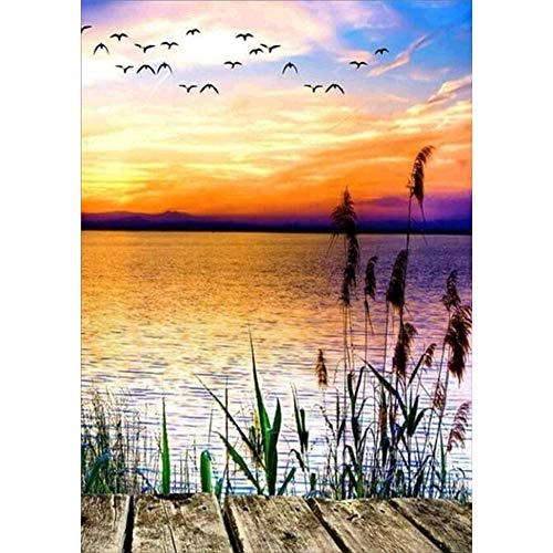 Sunnay Diamond Art, Diamant Painting Bilder, Full Drill Sonnenaufgang am Meer I DIY 5D Crystal Set DIY Malerei,30 x 40 cm