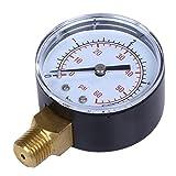 sgerste Pool Spa Filter Wasser Manometer 0–60PSI Seite Mount 1/4NPT Rohr Gewinde 0–4bar 60PSI