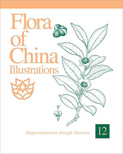Flora of China Illustrations, Volume 12: Hippocastanaceae Through Theaceae
