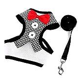 SGXDM Haustier Hundegeschirre Geschirr Schutz, einfarbig, Netz, Brustrücken, Kleiner Hund, Katze, Blau, Karo, M Reisen,draussen Laufen,Laufen
