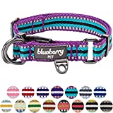 Blueberry Pet 3M Reflective Multi-colored Stripe Violet and Celeste Dog Collar, Medium, Neck 37cm-50cm, Adjustable Collars for Dogs