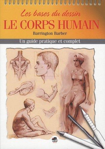 Les bases du dessin : le corps humain