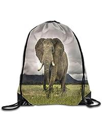 HLKPE Drawstring Backpack Insulated Cooler Sack Bag Animals Elephant Big Ears Cute Beam Bags