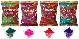 VG Toys & Novelties Vedant Holi Herbal Gulal Powder (100 g Each, Multicolour) - Pack of 4