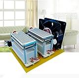 JIAN YA NA 220V 20G 20000mg/h Ozone Generator Ceramic Air Purifier Ozone Generator Ozonizer