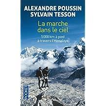 Sylvain tesson books biogs audiobooks - Sylvain tesson une vie a coucher dehors ...