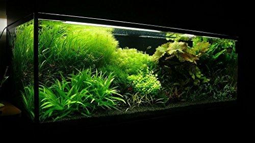 TM Aquatix Aquarium Sand Natural Fish Tank Gravel Plant Substrate (15kg, Black 0,6-1,2mm) 4