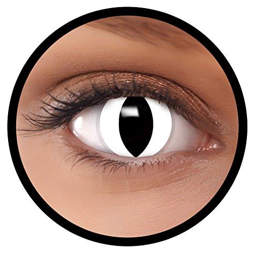 FXEYEZ® Farbige Kontaktlinsen weiß White Cat + Linsenbehälter, weich, ohne Stärke als 2er Pack - angenehm zu tragen und perfekt zu Halloween, Karneval, Fasching oder Fasnacht