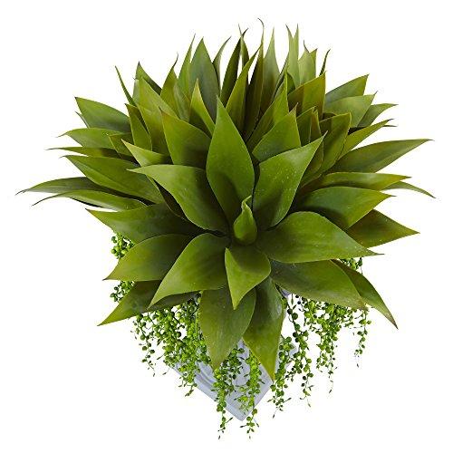 Fast natur Agave und Klebriges Sukkulente Arrangement, Green