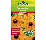 Dehner Blumen-Saatgut, Sonnenhut