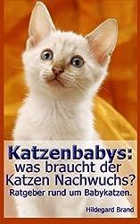 Katzenbabys: was braucht der Katzen Nachwuchs?: Ratgeber rund um Babykatzen.