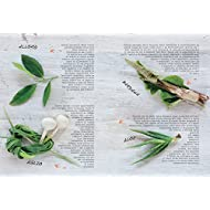 Erbe-e-aromi-La-natura-al-servizio-della-salute