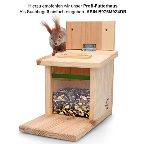 AniForte Wildlife Premium Eichhörnchenfutter 1 kg für Eichhörnchen und Streifenhörnchen - Naturprodukt Mischung, Besondere und artgerechte Eichhörnchen Fütterung - Unsere Spezial Futtermischung - 6