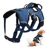 Petacc Hundebrustgurt,Brustgeschirre Atmungsaktiv Einstellbar Geeignet für mittelgroße und Große Hunde Königsblau L