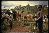 189082 A Cowboy Kenya A4 Photo Poster Print 10x8