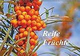 Reife Früchte (Wandkalender 2019 DIN A2 quer): Lassen Sie sich mit Obst, frisch von Baum und Strauch, durch das Jahr begleiten. (Monatskalender, 14 Seiten ) (CALVENDO Natur)