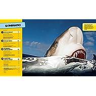 Tutto-sugli-squali-Ediz-a-colori