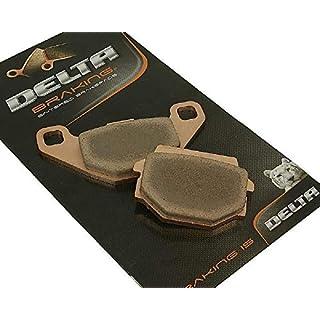 Bremsbeläge DELTA BRAKING Sinter - TGB 325 Blade Quad Baujahr 07-10 (Hinten)