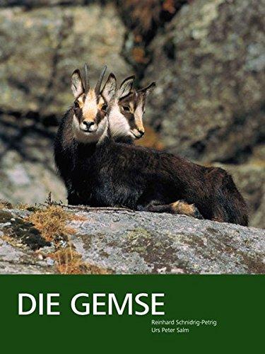 Die Gemse - Biologie und Jagd