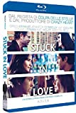 Stuck in Love (Blu-Ray)