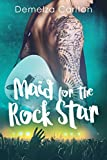 Maid for the Rock Star (Romance Island Resort Series Book 1) (English Edition)