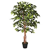 Homescapes Kunstbaum Ficus Benjamini grün 120 cm