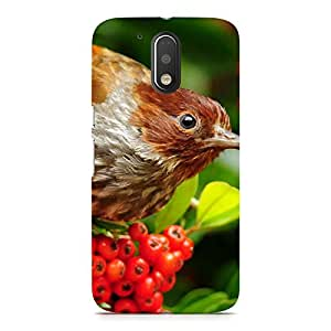 Hamee Designer Printed Hard Back Case Cover for Motorola Moto E3 Design 6422