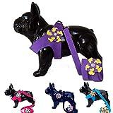 Lushpetz Arnés para perro con flor y correa a juego en color rosa, negro, azul o morado para pequeñas razas de perros Xsmall