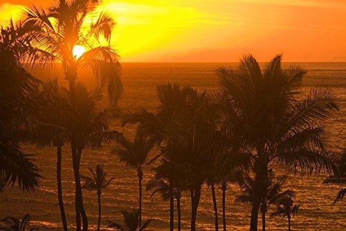 The Poster Corp Stuart Westmorland/Design Pics - Sunset On Beach Wailea Hawaii Photo Print (91,44 x 60,96 cm)