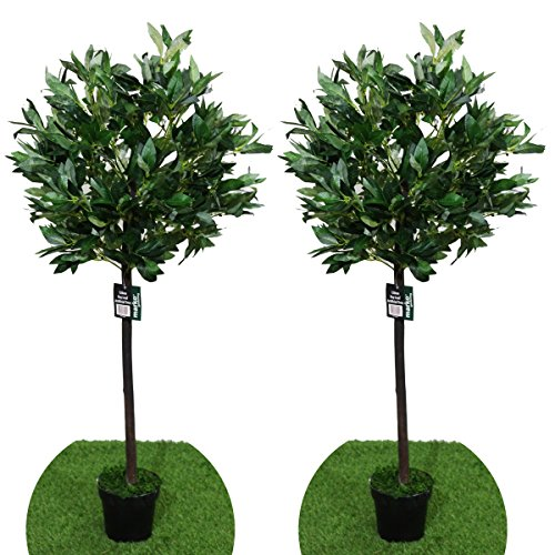 Pair Of 4FT Artificial Bay Leaf Tree Indoor Or Outdoor Decorative Replica  Plant 120cm
