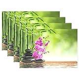 Vinlin Platzdeckchen/Platzdeckchen / Platzdeckchen aus Bambus, hitzebeständig, Blumen-Orchidee, 30,5 x 45,7 cm, 4 Stück, Multi, 4 Stück
