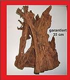 Mangrove racine, garanti 35cm, aquarium, terrarium