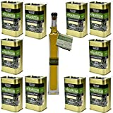 Olipaterna Olivenöl Kaltgepresstes Extra Virgin   Aus Andalusien   100% natürliches & reines Olivenöl für Feinschmecker   10 Stück 250 ml Kanister   100 ml Olipaterna Geschenk