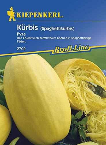 Kürbissamen - Kürbis Pyza von Kiepenkerl