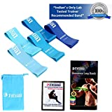 Fitzeal India's First CE Certified Blue Collection Resistance Bands With FREE WORKOUT GUIDE and CARRY BAG Exercise Loops - Set of 5, 12-inch Workout Flexbands for Home Fitness, Stretching, Physical Therapy and More