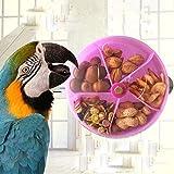 Hypeety uccello Parrot Foraggiamento giocattolo creativo di semi di cibo palla ruota ruota crescita intelligenza formazione giocattolo per pappagallo parrocchetto Cockatiel Conure Lovebird