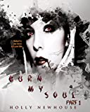 Front cover for the book Burn My Soul: Part I by Holly Newhouse