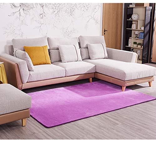TOYBO HRYP Alfombra Sala de Estar Dormitorio Sencillo y Moderno IKEA Sofu00e1 Mesita de Noche Mu00e1quina de pavimentaciu00f3n Completa Lavado de alfombras para el hogar
